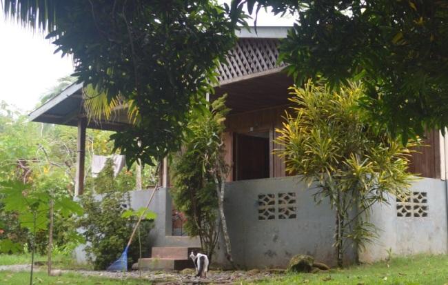 Pilon surf home for sale