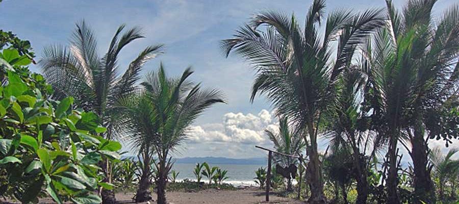 Playa Zancudo Oceano Resaurant