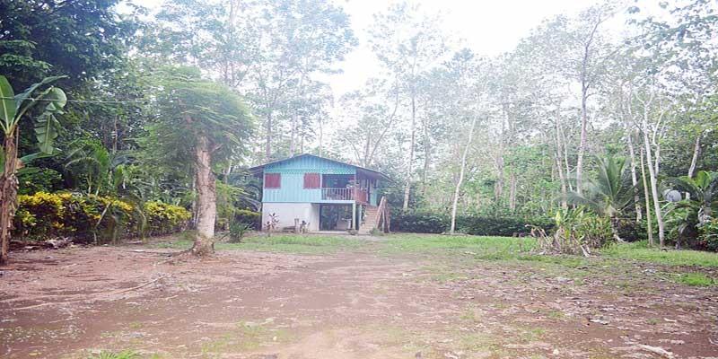 La Hierba Home For Sale 65K
